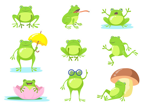 Cute frog in different poses flat character set