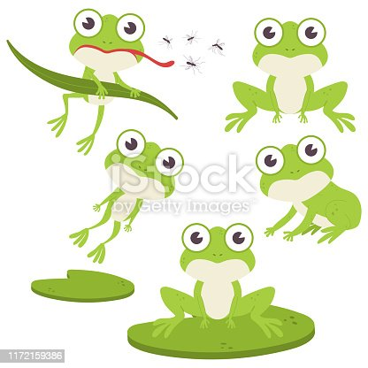 Cute frog vector cartoon characters set.