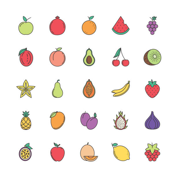 Cute Fruit Icon Simple fruit icon avocado drawings stock illustrations