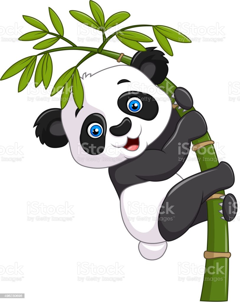 baby panda hanging on a bamboo tree stock