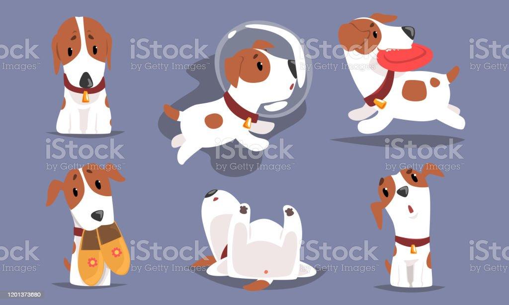 귀여운, 재미, 비글, 개, 귀여운, 귀여운, 애완 동물, 동물, 동물, 동물, 귀여운, 동물, 동물, 동물, 귀여운, 동물, 동물, 귀여운, 동물, 동물, 귀여운, 동물, 동물, 귀여운, 동물, 동물 - 로열티 프리 강아지-어린 동물 벡터 아트