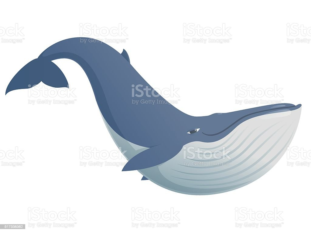 Cute funny blue whale vector art illustration
