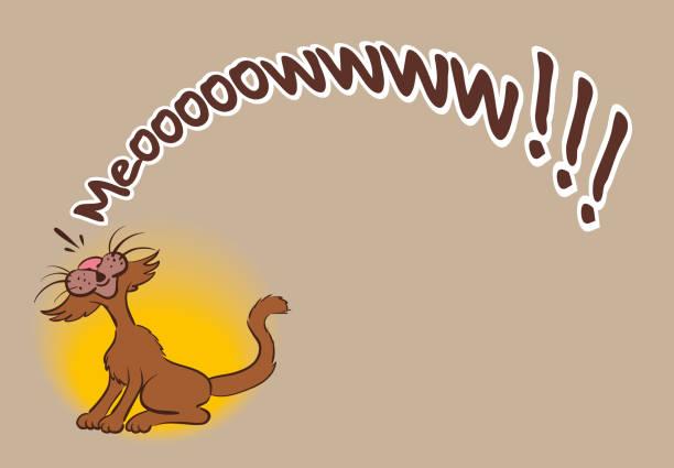 stockillustraties, clipart, cartoons en iconen met leuke grappige kat miauw belettering van tekst - miauwen