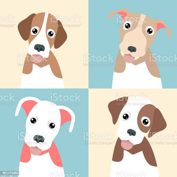 Cute funny pupply pack collection vector id901473382?b=1&k=6&m=901473382&s=612x612&h=pnouon7sy4tjv  xuwdrz5zbdmdkex txzwz2gfa fo=