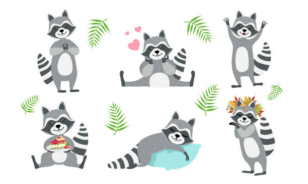 Cute Funny Raccoons Collection, Adorable Funny Forest Animal Character in Different Situations Vector Illustration Cute Funny Raccoons Collection, Adorable Funny Forest Animal Character in Different Situations Vector Illustration on White Background. raccoon stock illustrations