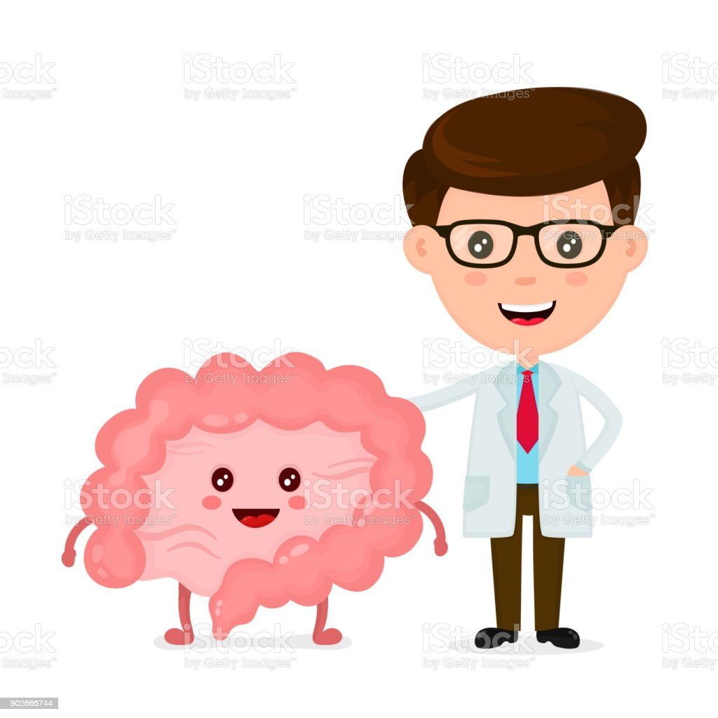 Cute funny smiling doctor and healthy happy intestines vector art illustration