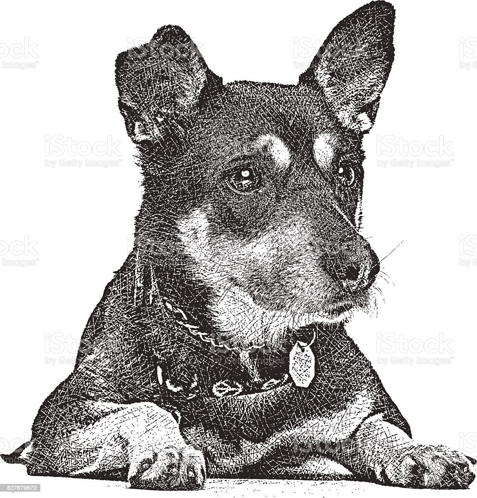 Cute German Shepherd Puppy Waiting  To Be Adopted vector art illustration
