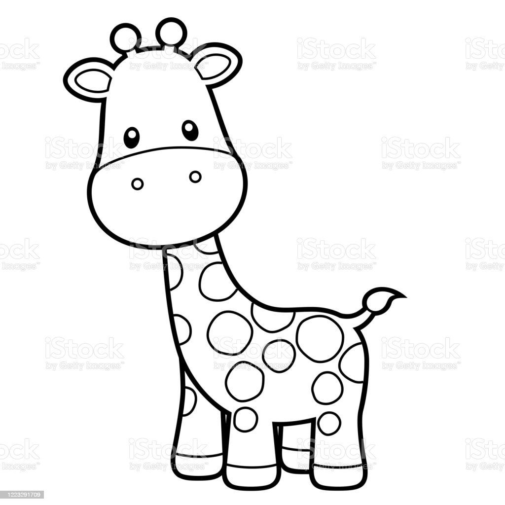 - Cute Giraffe Coloring Page Vector Illustration On White Stock