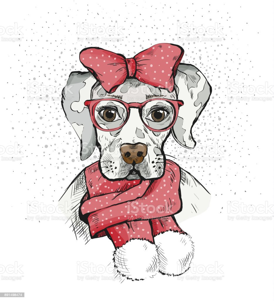 Cute Girl Dog in a winter scarf and red bow on its head. Pedigree dog. Labrador. vector art illustration