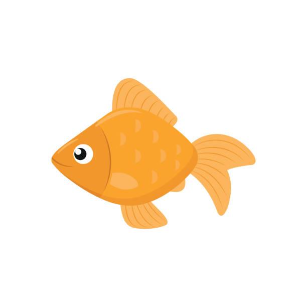 illustrazioni stock, clip art, cartoni animati e icone di tendenza di cute goldfish icon - pesci