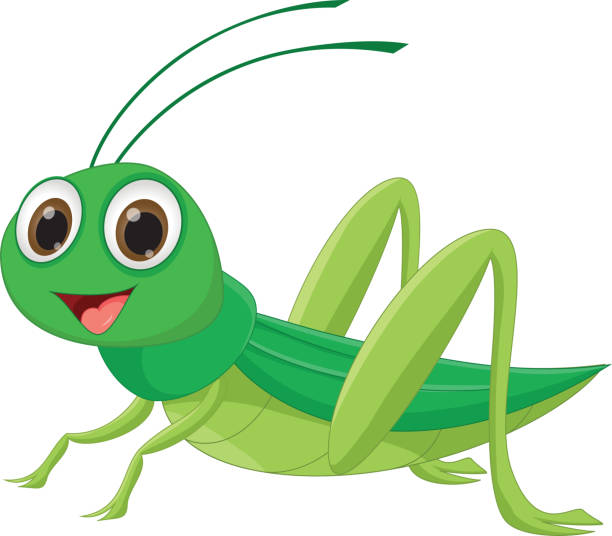 Aninimal Book: Royalty Free Grasshopper Clip Art, Vector Images ...