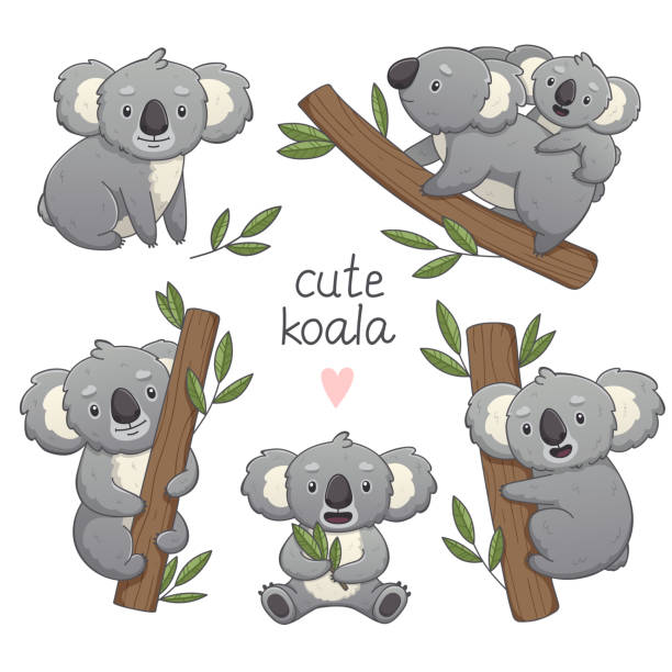 cute gray koala set in differet poses. - koala stock illustrations