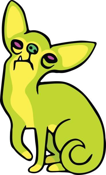 niedliche grüne chihuahua hund. vektor-illustration. - hundehaarbögen stock-grafiken, -clipart, -cartoons und -symbole