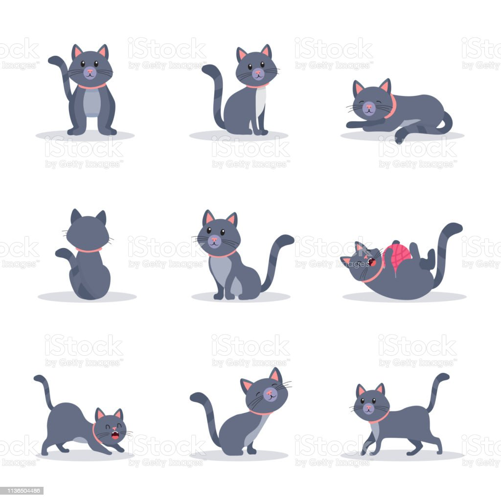 Cute grey cats vector color illustrations set. Playful and naughty...
