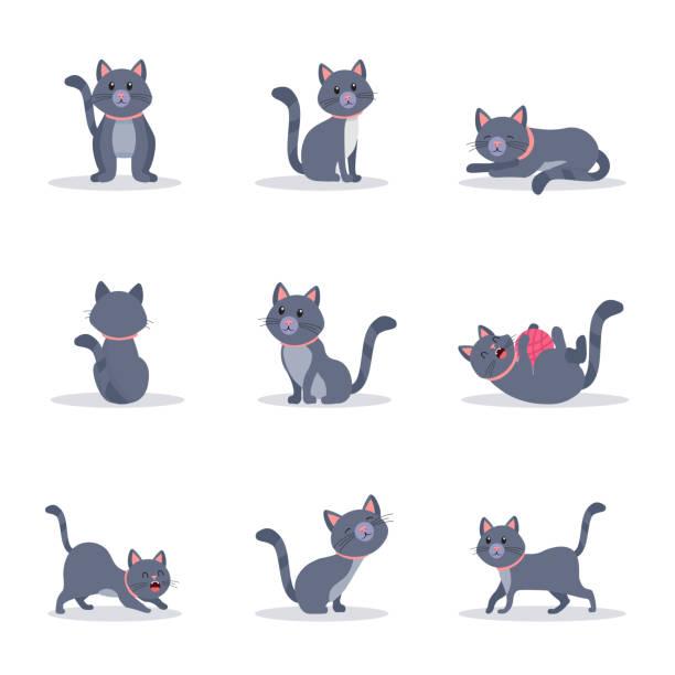 stockillustraties, clipart, cartoons en iconen met cute grey cats vector kleurillustraties set - miauwen