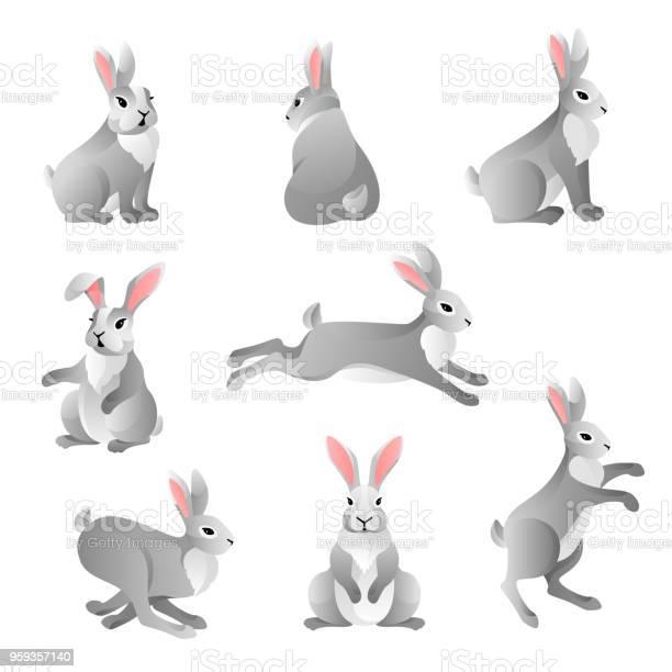 Cute grey rabbits set vector id959357140?b=1&k=6&m=959357140&s=612x612&h= ycyzmifkoifosf5rvkc n1kw8rhej2wtqunbhqbg8w=