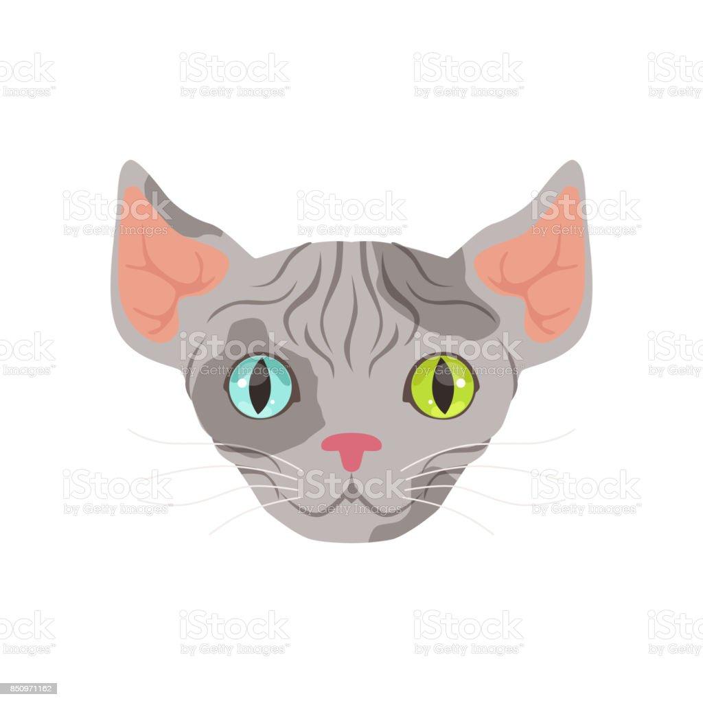 Ilustración de Gato Esfinge Gris Lindo Con Ojos De Diferentes ...