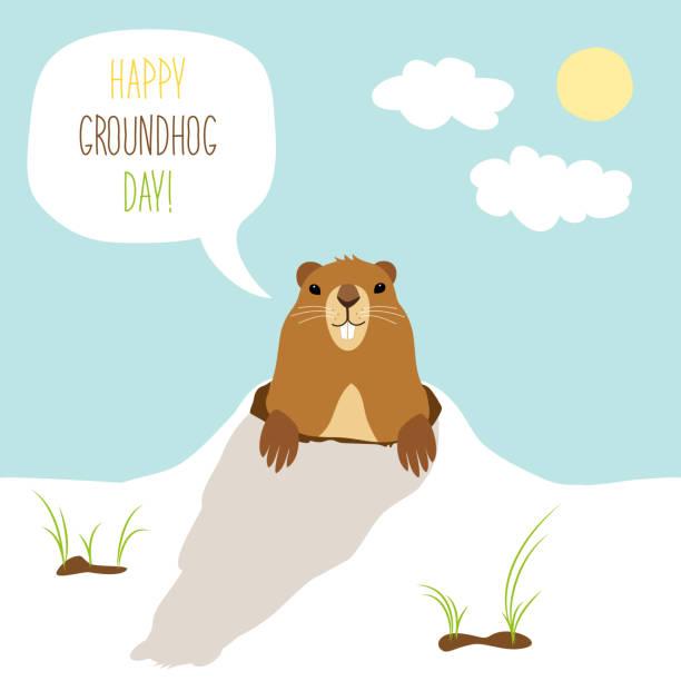 ilustraciones, imágenes clip art, dibujos animados e iconos de stock de tarjeta linda del día de la marmota como personaje de dibujos animados divertidos de marmota - groundhog day
