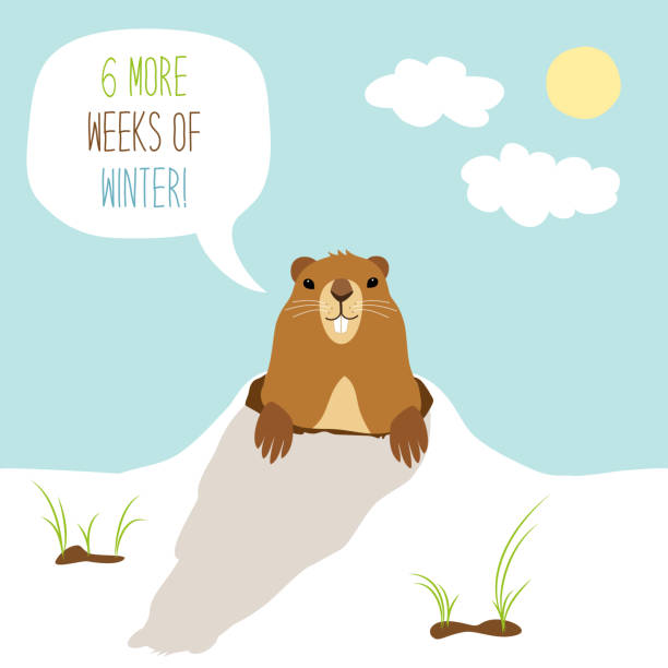 cute groundhog day card as funny cartoon character of marmot - hibernation stock illustrations, clip art, cartoons, & icons