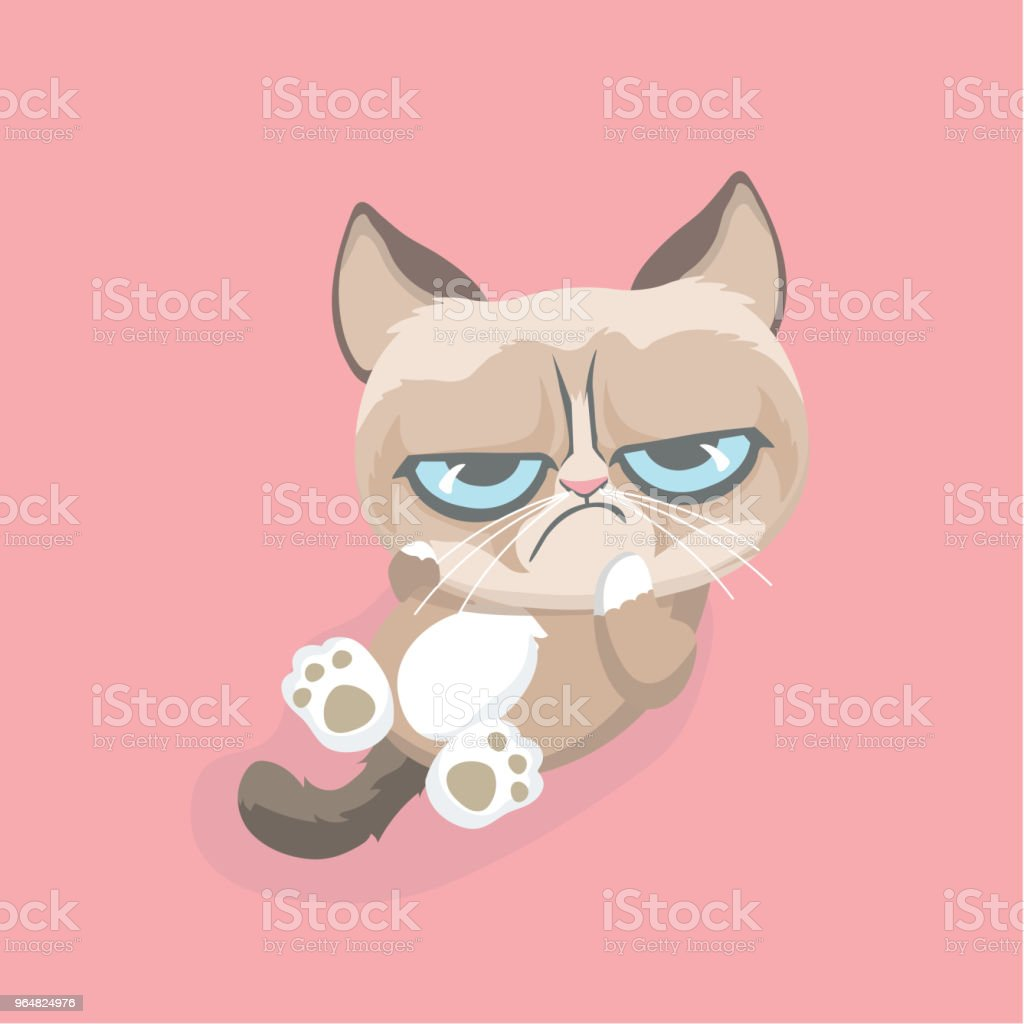 Cute grumpy cat. royalty-free cute grumpy cat stock vector art & more images of anger