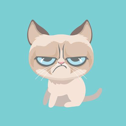 Cute grumpy cat. Vector Illustration.