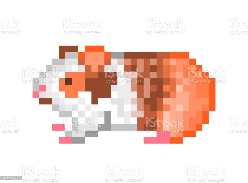 Cochon Dinde Mignon Pixel Art Icône Disolement Sur Fond