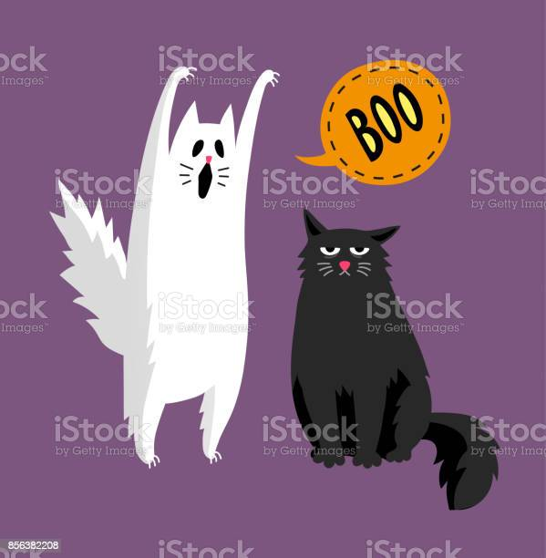 Cute halloween ghost and black cat vector id856382208?b=1&k=6&m=856382208&s=612x612&h=w vbcnhqhem5kindyezmb7cmkg7xjoqm30bz7v9hana=