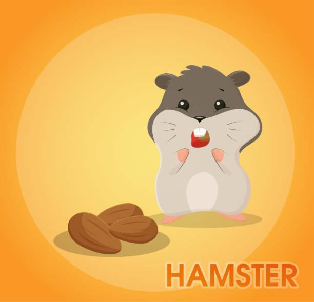 ein niedliche hamster cartoon ist mandeln und hält sie in den wangenknochen. - hamsterhaus stock-grafiken, -clipart, -cartoons und -symbole