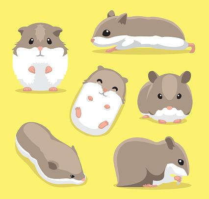 Cute Hamster Poses Cartoon Vector Illustration