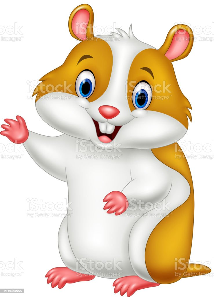royalty free hamster clip art vector images illustrations istock rh istockphoto com hamster clip art borders hamster clipart free