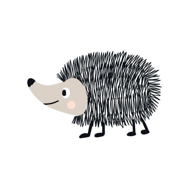 Cute hand drawn nursery poster with hedgehog animal. Vector illustration in candinavian style Cute hand drawn nursery poster with hedgehog animal. Vector illustration in candinavian style. hedgehog stock illustrations