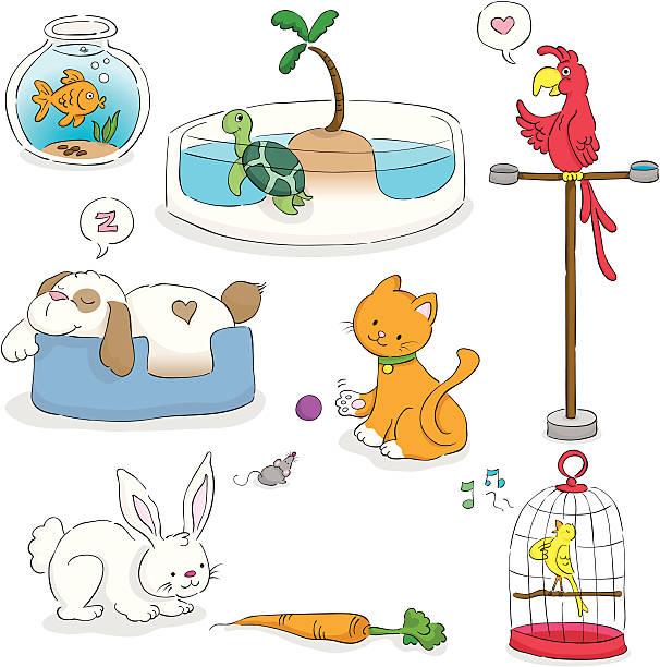 illustrations, cliparts, dessins animés et icônes de adorable ensemble dessiné à la main les animaux de compagnie - dessin cage a oiseaux