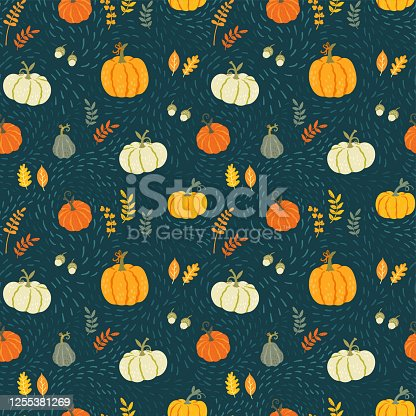 istock Cute hand drawn pumpkin seamless pattern, hand drawn pumpkins - great as Thanksgiving background, textiles, banners, wallpapers, wrapping - vector design 1255381269