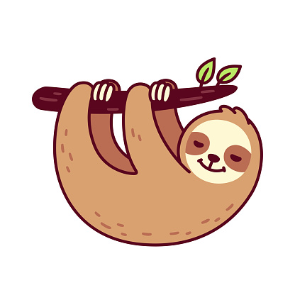 Cute hanging sloth
