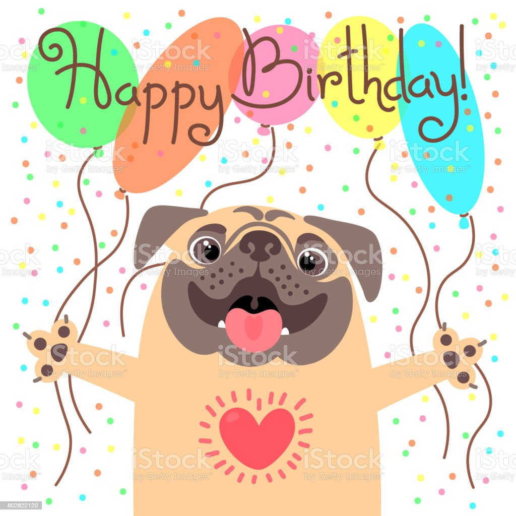 cute happy birthday card with funny puppy loving pug and