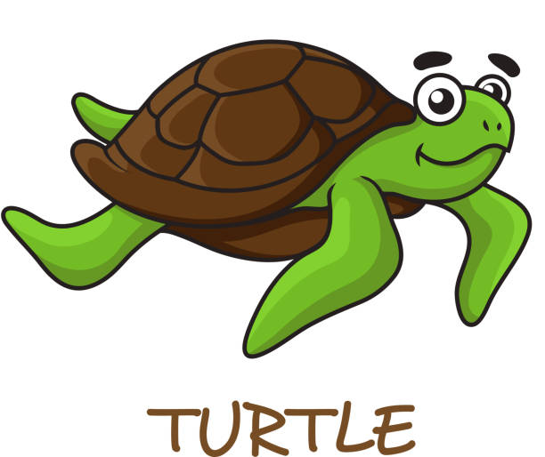 77 Cute Turtle Tattoo Drawings Illustrations Royalty Free Vector Graphics Clip Art Istock