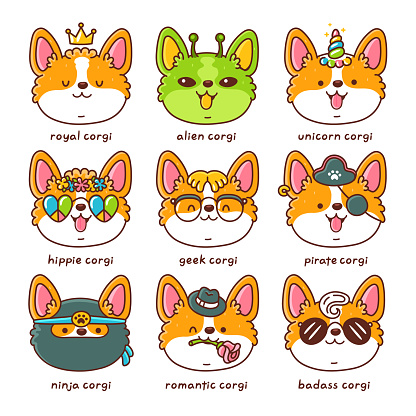 Cute happy different corgi dog face set