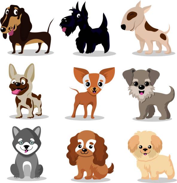 niedliche glückliche hunde. cartoon-lustige welpen-vektor-characters-auflistung - schoßhunde stock-grafiken, -clipart, -cartoons und -symbole