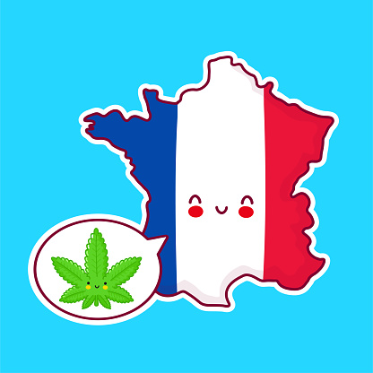 Cute happy funny France map and flag