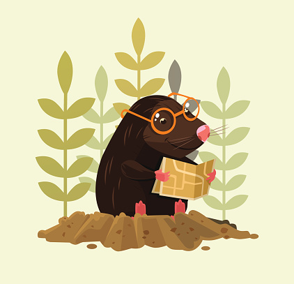 Cute happy smiling mole character sitting and read map