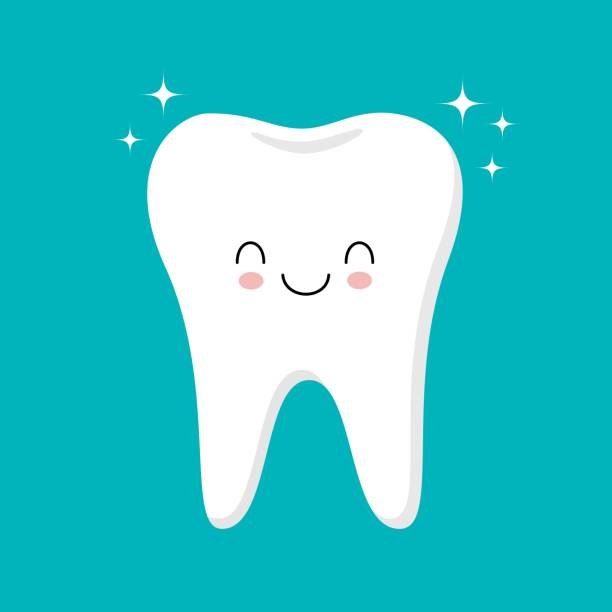 illustrazioni stock, clip art, cartoni animati e icone di tendenza di cute healthy shiny cartoon tooth character, childrens dentistry concept vector illustration - denti