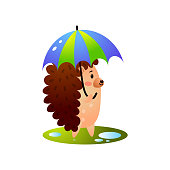 Cute hedgehog is walking after storm rain with colorful umbrella. Cartoon style. Vector illustration on white background