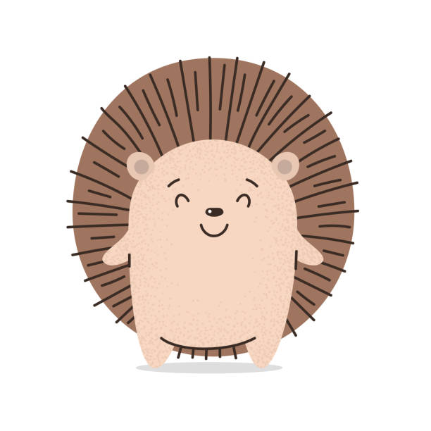 Cute hedgehog smiles. Flat hand drawn illustration kid's poster. Kavay prickly little hedgehog asks for a hug. Cartoon animal character set. For baby t-shirt print, kids wear, baby greeting card Cute hedgehog smiles. Flat hand drawn illustration kid's poster. Kavay prickly little hedgehog asks for a hug. Cartoon animal character set. For baby t-shirt print, kids wear, baby greeting card hedgehog stock illustrations