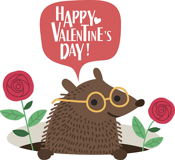 Cute hedgehog Valentines day card. Romantic vector illustration. Cute hedgehog Valentines day card. Romantic vector illustration. animal valentine stock illustrations