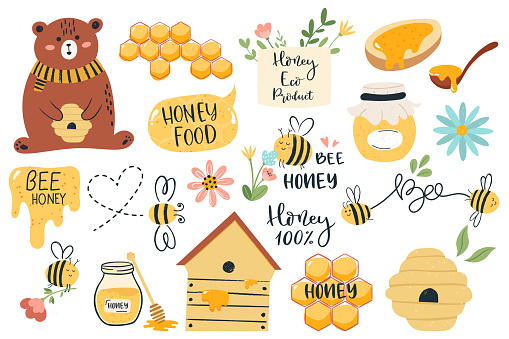 Cute honey symbols. Hand drawn honey jar, honeycomb and bee insects, funny honey doodle beekeeping farm isolated vector illustration set