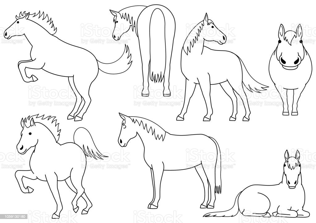 Cute Horse Doodle Drawing Set Stock Illustration Download Image Now Istock