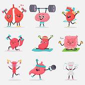 Cute human internal organ doing yoga and fitness exercises vector cartoon characters set.