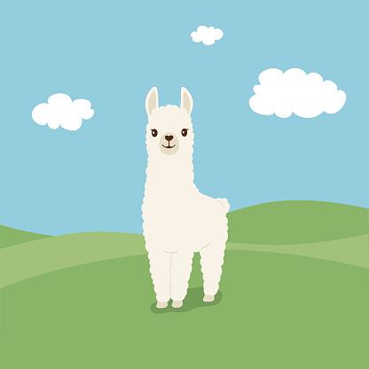 Cute illustration of Llama on green field
