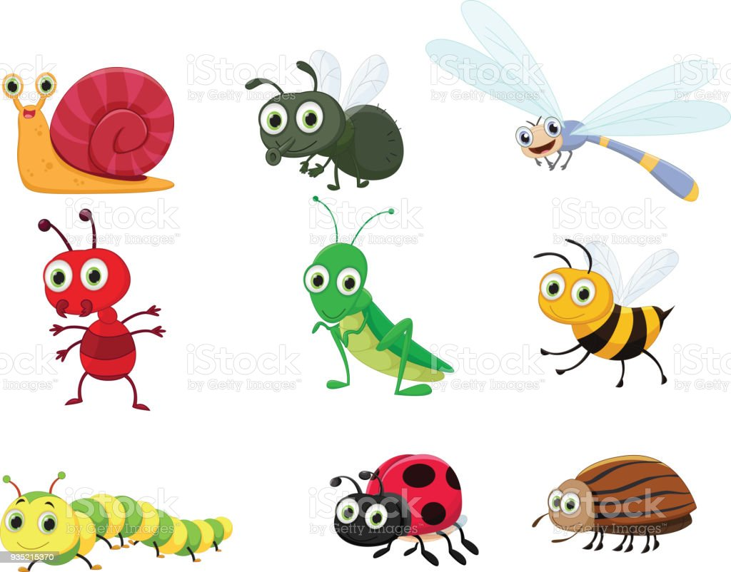 cute insect collection set vector art illustration