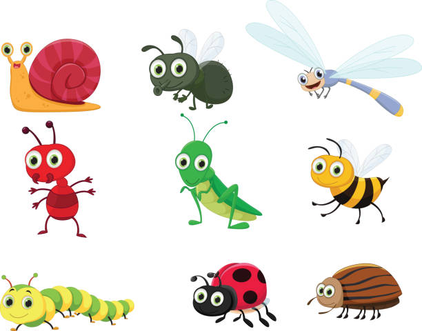 cute insect collection set - bugs stock illustrations, clip art, cartoons, & icons